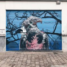 #streetphotography #streetart #art #streetartistry #gent #ghent #visitgent #eagle #colours in the #streets #belgium #igbelgium #wanderlust #travel #travelgram #vsco #vscocam #guardiancities #guardiantravelsnaps #lonelyplanet