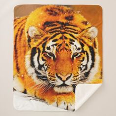 Siberian Tiger Sherpa Blanket - home gifts ideas decor special unique custom individual customized individualized