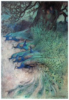 """""""Hundreds of peacocks of gorgeous plumes"""" Illustration by Warwick Goble, from Folk-tales of Bengal, by Lal Behari Day, London, Claude Monet, Art Du Temps, Warwick Goble, Psy Art, Fairytale Art, Children's Book Illustration, Book Illustrations, Conte, Graphic"""