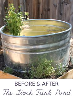 A small stock tank pond serves many functions in the kitchen garden. via beanandbee.com