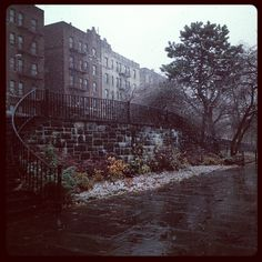St. James Park by my maternal grandmother's house in Fordham