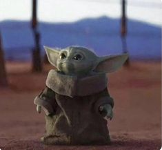 Cute Puppies You'll Have to See to Believe star wars Baby Yoda Yoda Pictures, Yoda Images, Star Wars Pictures, Star Wars Meme, Star Trek, Star Wars Baby, Yoda Meme, Fandom, Star Wars Wallpaper