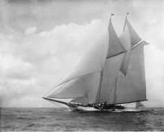 Schooner America, with her modified rig.  Originally she didn't have a topsail on her foremast and had only one jib forward with a long jib boom, not the three headsails in the photo.