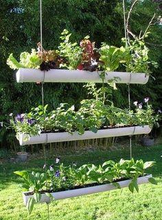 Geek Living:  beautiful hanging pot plant for back yard