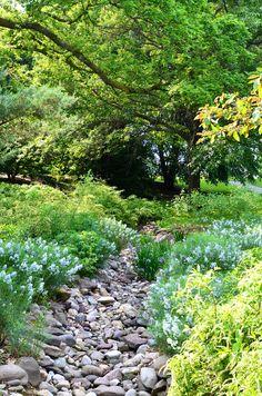 Scott Arboretum at Swarthmore College
