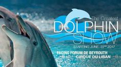 https://www.change.org/p/cirque-du-liban-dolphins-belong-in-the-wild-and-not-in-circuses?recruiter=55825429&utm_source=share_petition&utm_medium=facebook&utm_campaign=autopublish&utm_term=des-lg-share_petition-no_msg