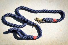 product review lasso leash