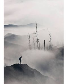 Silence is the universal refuge, the sequel to all dull discourses and all foolish acts, a balm to our every chagrin, as welcome after satiety as after disappointment. ~ Henry David Thoreau/ ~ photo v.Syaifullah Maulana, thank you
