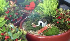 Mini Gardening - Whimsy For All Ages, How-to & Inspriation Garden Whimsy, Miniature Fairy Gardens, Garden Inspiration, Garden Ideas, Gardening Tips, Christmas Crafts, Miniatures, Landscape, Plants