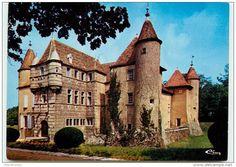 Château de l'Aubépin. (Loire)