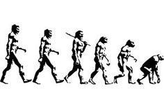 Darwin Evolution, Current Picture, Stickers, Wall Art, Pictures, Character, Inspiration, Photos, Biblical Inspiration