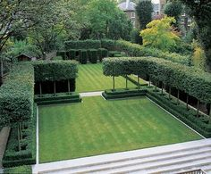 clean lines and open feel. these topiary hedges look lighter than top to bottom hedges - Luciano Giubbilei Garden Design. You can use this technique to create outdoor rooms. Modern Landscaping, Outdoor Landscaping, Landscaping Jobs, Back Gardens, Small Gardens, Formal Gardens, Outdoor Gardens, Outdoor Rooms, Outdoor Living