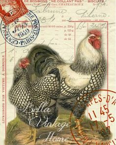 Original artwork created from vintage bookplates, etchings & papers. Printed in the USA on handcrafted paper More farmhouse pillow covers at The Swanky Rooster. Vintage Labels, Vintage Postcards, Vintage Images, Vintage Ephemera, Vintage Paper, Vintage Art, Shabby Vintage, Rooster Art, Rooster Decor