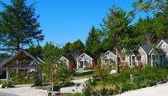 Cabins at Seabrook, WA