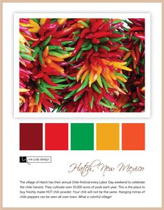 LOVE this color pallette! Color Pairing, Color Combos, Color Schemes, Mexican Colors, Mexican Style, Red Colour Palette, Color Palate, Mexican Table Setting, Elements And Principles