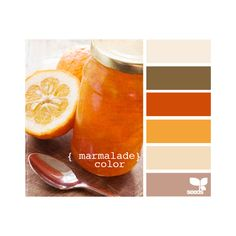 Design Seeds ❤ liked on Polyvore featuring design seeds, colors, backgrounds, orange and pictures