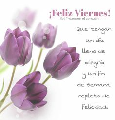 ¡Feliz Viernes! Que tengan un día lleno de alegría y un fin de semana repleto de felicidad. @trazosenelcorazon