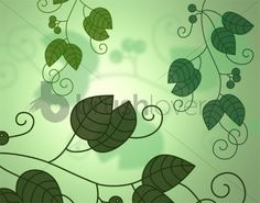 Free Floral Photoshop Brushes