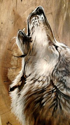 wolf in the wood Wolf Spirit, Spirit Animal, Beautiful Wolves, Animals Beautiful, Animal Paintings, Animal Drawings, Wolf Artwork, Wolf Painting, Wolf Wallpaper