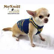 Chihuahua fashion.