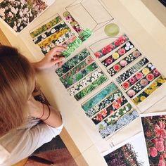 Cut Flower_planning