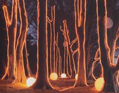 Landscape illuminated by trees delineated with ropes of fluorescent lightning photographed by Tim Walker