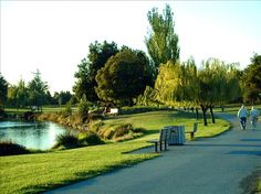 Summer evening at Shoreline Park in Mountain View. It's really that beautiful...