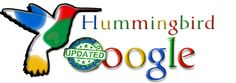 Google Hummingbird Update 26/09/2013