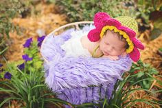 Tampa Newborn Photographer, Tiffany Walensky Photography, baby girl sleeping pose portrait session outside outdoors garden flowers fur basket grass