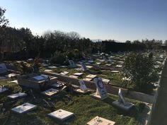 Λειτουργεί πλέον και στην Ελλάδα το πρώτο νεκροταφείο κατοικίδιων