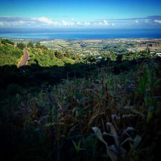 Go to Work ! Sans soucis ! #cassepaslebol #lareunion #974 #landscape #whatanadventure #sky #mafate #trail #training #canalisation #5daysbeforeaustralia #ahhhhh by the_roche_plater