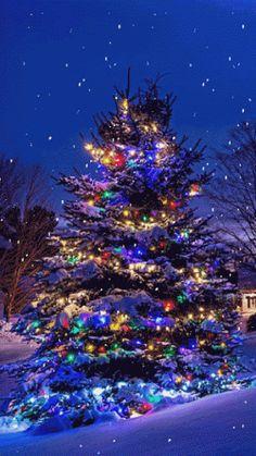 Новий рік в Закарпатті