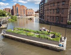 German designer Gitta Gschwendtner and Brazilian artist Maria Thereza Alves have planted a garden on a derelict barge in Bristol Harbour using the kinds of foreign seeds that were once mixed up in ships' ballast before being dumped in the river (+ slideshow).