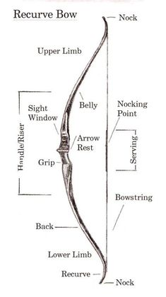 Love my Recurve bow! Recurve bow (reference and terminology) I'm not pinning this because of Katniss. I like archery, okay? Writing Advice, Writing Help, Writing A Book, Writing Prompts, Writing Fantasy, Writing Ideas, Recurve Bows, Archery Bows, Archery Hunting