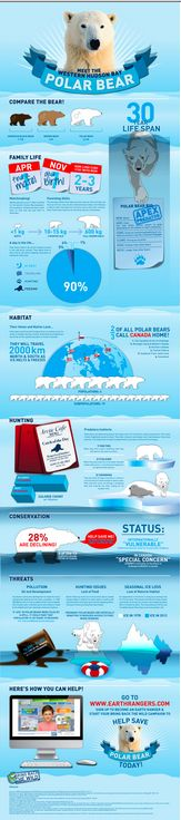 Great infographic from Kid Rangers. They help kids help animals. http://www.earthrangers.com/wildwire/take-action/polar-bear-infographic/