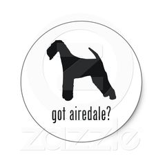 got airedale?