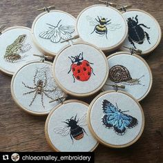 Bugger me it's Friday! #regram @chloeomalley_embroidery  Bug Club....and a froggy .You can visit chloeomalley.bigcartel.com to have a lil look at all my recent work. I will be adding more items over the weekend! #embroidery #embroideryartist #embroideryart #handembroidery #handmade #handstitched #botanical #wildlife #em_hm #d2dfest #leeds #hoopla #naturalhistory #nature #ladybird #butterfly #lepidoptera #creativityfound #mrxstitch via The Mr X Stitch official Instagram  Share your stitchy…