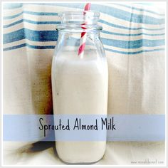 :: sprouted almond milk recipe ::