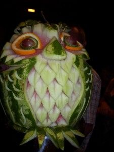 Watermelon Owl