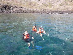 Otra de las actividades para los colegios es hacer #Snorkeling en las Islas #Galápagos en en donde se pueden encontrar con hermosa fauna marina que solo existe en Galápagos