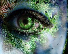 Photo of Fantasy eyes for fans of Eyes 5969426 Mother Earth, Mother Nature, Fantasy Eyes, Fantasy Art, Fantasy Makeup, Nature Verte, Eye Images, Girl With Green Eyes, Eyes Artwork