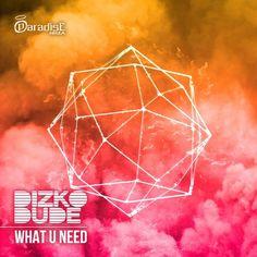 Dizkodude - What U Need - http://minimalistica.biz/dizkodude-what-u-need/