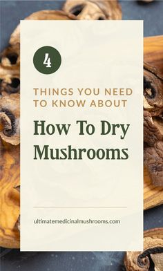 For mushroom lovers, it can be a challenge to look for your favorite varieties when they're off-season. Here's a great news: you can dehydrate them and stock up on some of those that are hard to hunt in the wild or at the market. Check out these 4 things to know if you want to dry mushrooms so you can get started with preserving your own mushroom supply. | Discover more about medicinal mushrooms at ultimatemedicinalmushrooms.com #dryingmushroomsforprofit #preservingmushrooms… Mushroom Gravy, Mushroom Risotto, Mushroom Sauce, Mushroom Recipes, How To Cook Mushrooms, Dried Mushrooms, Sauteed Mushrooms, Mushroom Hunting, Dehydrator Recipes