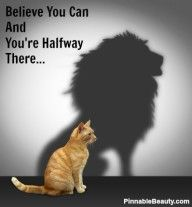 Believe You Can And You're Halfway There... My cats definitely think of themselves as lions! lol.