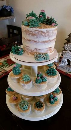 Cactus Cake and Cupcakes - TolleTorten - Baby First Birthday Cake, Cute Birthday Cakes, Mini Cakes, Cupcake Cakes, Sweets Cake, Cactus Cake, Cactus Cupcakes, Succulent Cupcakes, Cakes For Boys
