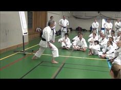 A short clip from an international seminar with Inoue Yoshimi sensei (b. 1946), Japanese national team kata coach and legendary head teacher. Here he demonstrates how to relax the hip joint for a stepping kick or punch.