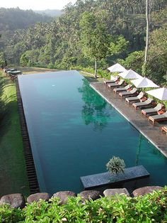 The coolest pool at Alila in Ubud, Bali, Indonesia - Pool - Piscina - бассейн - ברכה - piscine - zwembad - プール Places Around The World, Oh The Places You'll Go, Around The Worlds, Piscina Hotel, Bali Honeymoon, Cool Pools, Bungalows, Ubud, Pool Designs