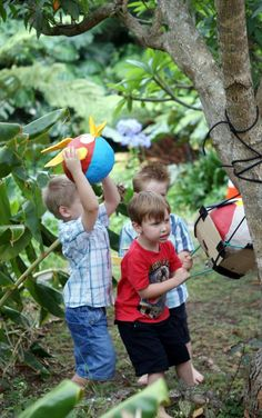 Angry bird sling shot and golden egg treasure hunt