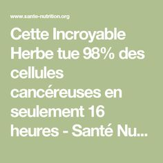 Cette Incroyable Herbe tue 98% des cellules cancéreuses en seulement 16 heures - Santé Nutrition I Feel Good, Good To Know, Fitness Diet, Health Fitness, Diet And Nutrition, Natural Health, Health And Beauty, Natural Remedies, The Cure