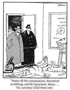 """Notice all the computations, theoretical scribblings and lab equipment, Norm ... Yes, curiosity killed these cats.""  